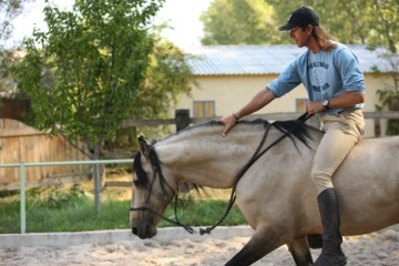 Frederic working with one of his stallions at home.  TTouches along the horses crest helped to encourage a more relaxed and balanced posture.
