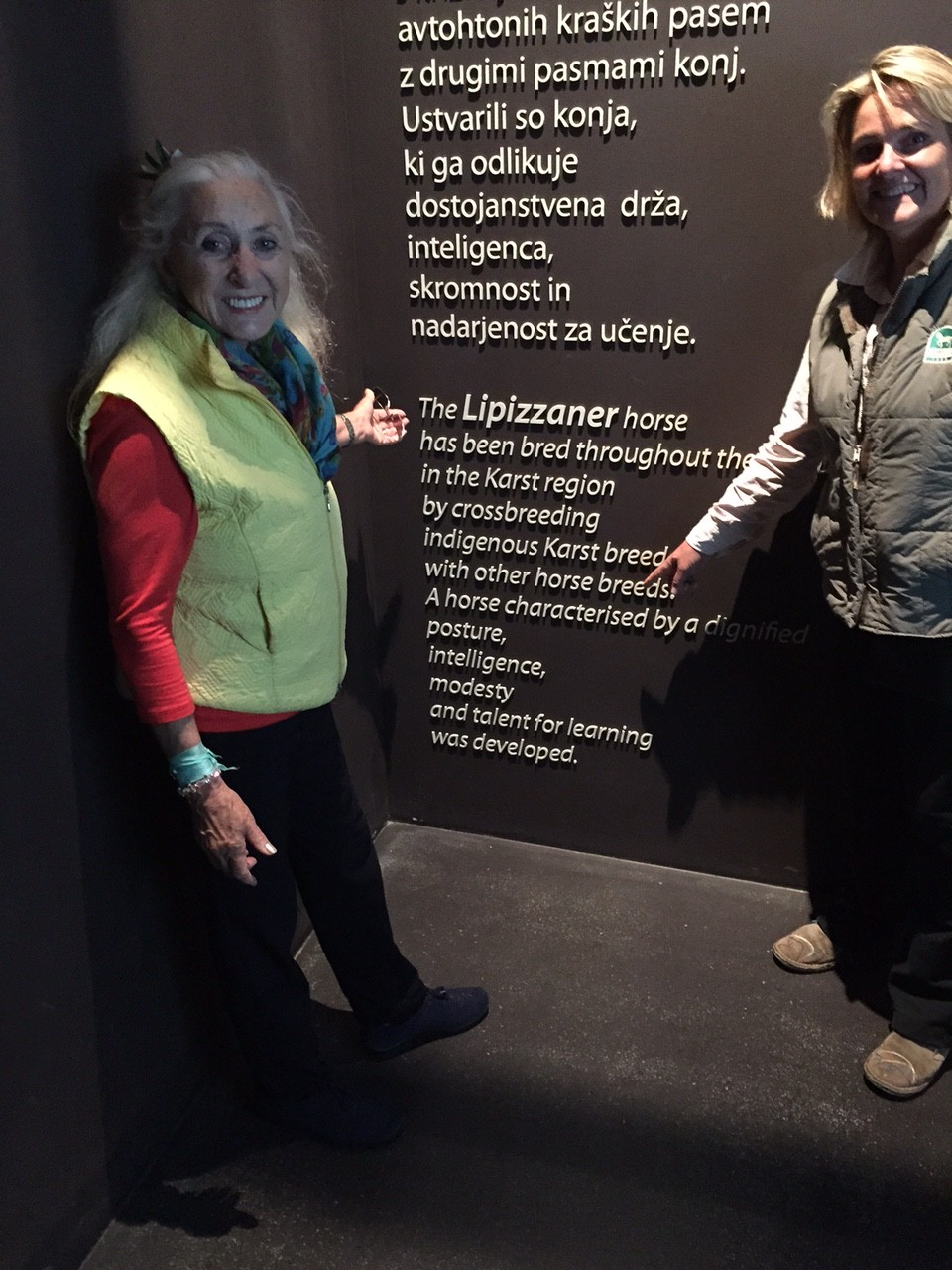 In the Lipiza museum
