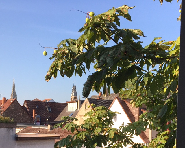 This was taken from our kitchen window.  2 speyers (spires) after which the town is named.